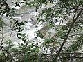 """""""Швидкі води ріки Прут."""".jpg"""