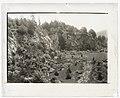 """Benventuo,"" Robert Pim Butchart house, 800 Benvenuto Avenue, Central Saanich, British Columbia, Canada. Quarry garden LCCN2008677595.jpg"