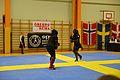 Örebro Open 2015 114.jpg