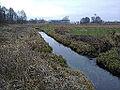 Łabnianka - rzeka Łabna.jpg