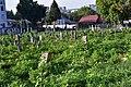Єврейське кладовище Світло душі Хм 01.jpg