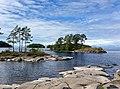 Валаам, Ладожское озеро, камни, берег, сосны, остров, природа.jpg