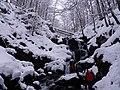 Водоспад Шипіт зимою.jpg