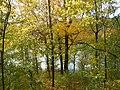 Вінничина, Муровані Курилівці парк Жван 29.jpg