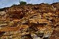 Известняки касимовского яруса верхнего карбона.jpg