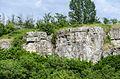 Камни - panoramio (13).jpg