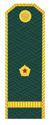 Младший лейтенант ФТС РФ.png