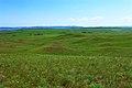 На горизонте хребет Карамурунтау - panoramio.jpg