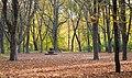 Парк імені Пушкіна (Київ).jpg