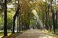 Парк ім. Т. Г. Шевченка в Івано-Франківську P1310056.jpg