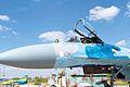 Пілоти винищувачів вдосконалюють льотну майстерність на бойових літаках Су-27 та навчально-бойових Л-39 (27623039242).jpg