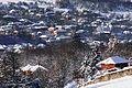 Село Беглеж - Община Плевен - panoramio.jpg