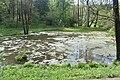 Трускавецький парк 28.jpg