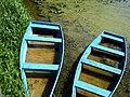 Човни в озері в парку.jpg