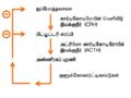அட்ரினோ கார்டிகோடிரோபிக் இயக்குநீர் எதிர்ப்பின்னூட்டம்1.png