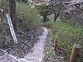 うつぶな公園 - panoramio (21).jpg