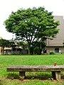 千葉栄町の空き地 - panoramio (1).jpg