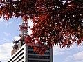 名城公園 - panoramio (1).jpg