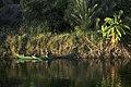 埃及 运河上的渔夫 - panoramio.jpg