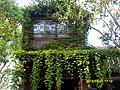 绿房子 - panoramio.jpg
