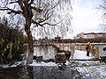 雪天的潍坊学院 2020-12-13 10.jpg