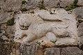 0075תבליט אריה שנמצאה בחפירות המבצר.jpg