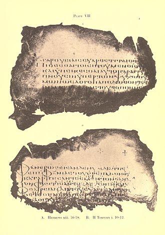 Codex Freerianus - Image: 016 (GA) Sander's facsimile, Plate VII