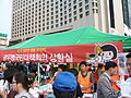 080607 ROK Protest Against US Beef Agreement 03.JPG
