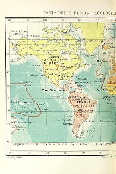 File:1250 of 'La Terra, trattato popolare di geografia universale per G. Marinelli ed altri scienziati italiani, etc. (With illustrations and maps.)' (11246681114).jpg