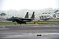 142fw Portland ANGB F-15s.jpg