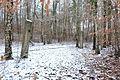 15-01-31-Franzosenbunker-Eberswalde-RalfR-DSCF2034-12.jpg