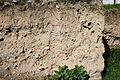 1556 - Keramikos archaeological area, Athens - Stratigraphy - Photo by Giovanni Dall'Orto, Nov 12 2009.jpg