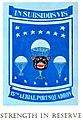 15thAPS Squadron-Patch.jpg