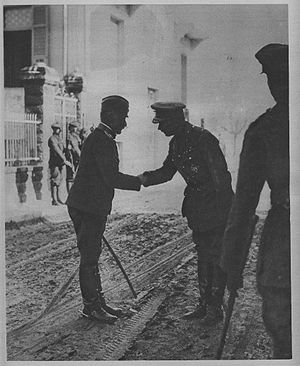 George Milne, 1st Baron Milne - General Milne (right) shaking hands with Field Marshal Živojin Mišić (left)