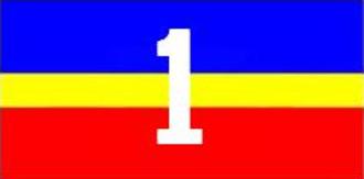 1 Service Battalion - The 1 Service Battalion flag.