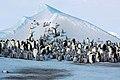 2007 Snow-Hill-Island Luyten-De-Hauwere-Emperor-Penguin-08.jpg