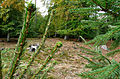 200910071026MEZ Wp 10-11 Holz 2.jpg
