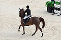 2013 Longines Global Champions - Lausanne - 14-09-2013 - Edwina Tops-Alexander et Fair Light van't Heike.jpg