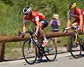 2014-07-16 Martin Elmiger Tour de France. Free Image Spielvogel. No copyright..jpg