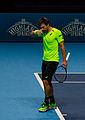 2014-11-12 2014 ATP World Tour Finals Alexander Peya by Michael Frey.jpg