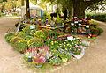 2015-10-17 11-18-08 marche-plantes-belfort.jpg