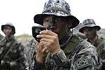 2015.9.2.해병대 1사단-상륙기습훈련 2nd Sep, 2015, ROK 1st Marine Division - amphibious warfare training (21136228095).jpg