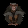 201502 Chimpanzee.png