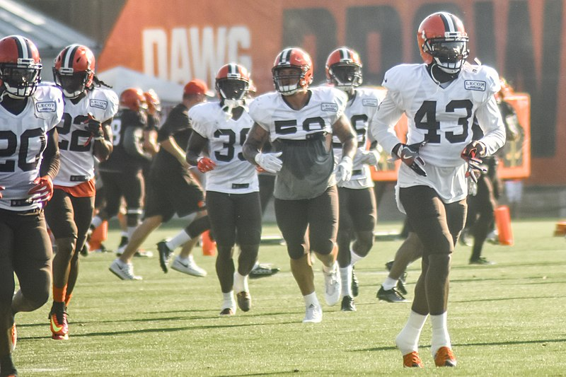 File:2016 Cleveland Browns Training Camp (28192568443).jpg