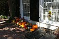 2017.10.27.121724 Halloween decoration Prince Street Alexandria Virginia USA.jpg