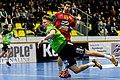 20180209 HLA Westwien vs. UHK Krems Jelinek Walzer 850 3728.jpg
