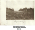 21 coleccion javier yubi la guerra grande numano boqueron 18 julio 1866 copy.png