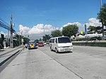 2387Elpidio Quirino Avenue NAIA Road 17.jpg