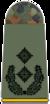 261-Oberstleutnant.png