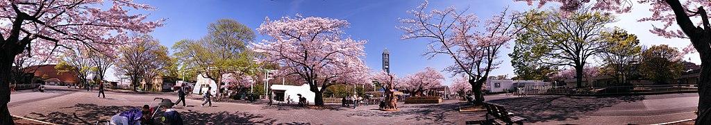 360° panorama at Higashiyama Zoo.jpg